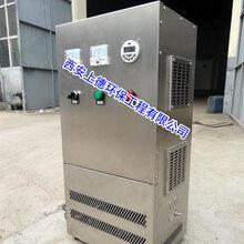 脉冲式生活水箱消毒器脉冲式消毒净水器