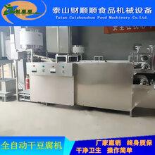 诸城全自动豆腐皮机豆腐皮机生产厂家免费技术培训图片