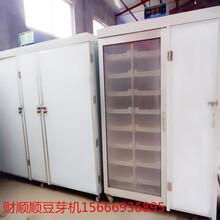 大连财顺顺商用自动淋水豆芽机箱式全自动豆芽机价格实惠图片