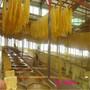 厦门腐竹机生产线自动化豆油皮机设备酒店专用图片
