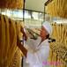 唐山财顺顺腐竹机生产厂家专业做豆油皮机器设备双十二热卖