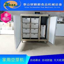 娄底全自动豆芽机不锈钢豆芽机生产线大型豆芽机可定做图片