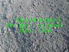 高硫石油焦增碳剂价格