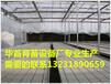 苗床网移动苗床网厂家直销质量保障