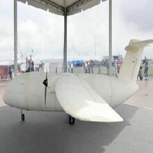 上海飞机模型供应商专业仿真图片