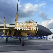 飞机模型定制厂家,仿真飞机模型大型展示图片