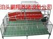 鹏翔养猪设备厂家直销单体母猪产床母猪产床多少钱一组