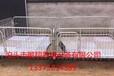 热镀锌2.2猪崽保育栏厂家直销小猪保育栏价格