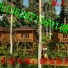 休闲度假小木屋