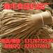 河北石家莊豆制品設備豆腐皮機廠家豆腐皮機價格