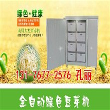 黑龙江大庆豆芽机械大型新款豆芽机的价格无需专人看管
