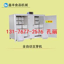 山东东营卖豆芽机械的厂家豆芽机鑫丰现货供应微电脑控制
