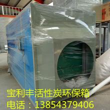 潍坊环保家具烤漆房,汽车烤漆房,光氧催化,活性炭吸附箱环保设备宝利丰厂家批发代理