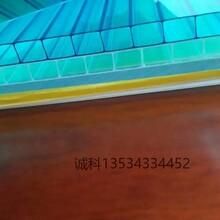 16mm透明PC阳光板厂家