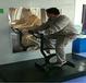 LX-022科技展品科普器材教學儀器-人體骨胳運動