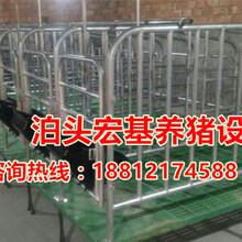一套带复合漏粪地板的限位栏价格是多复合限位栏厂家直销泊头宏基图片