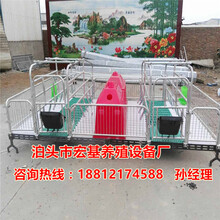 经济型母猪产床一套的价格是多少母猪产床专业生产厂家泊头宏基图片