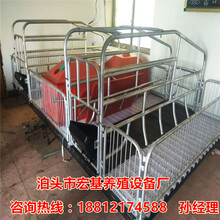 猪产床尺寸有哪些优质的双体猪产床价格是多少母猪产床厂家批发图片