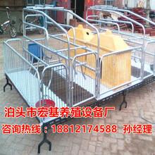 厂家供应四川母猪产床价格是多少新式母猪产床批发泊头宏基图片