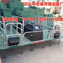 厂家供应复合产床一套多少钱最便宜的整体产床尺寸是多大合适宏基图片