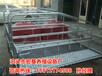 供应南宁养猪设备母猪产床尺寸齐全猪产床规格