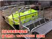 厂家供应陕西妊娠母猪产床厂家直销双体猪产床价格批发