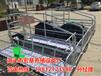 渭南养猪设备专业生产销售猪用分娩栏尺寸母猪产床批发