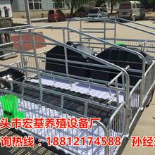 渭南养猪设备专业生产销售猪用分娩栏尺寸母猪产床批发图片