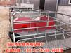 供应陕西养猪设备母猪产床销售猪用分娩床出售高培产仔栏报价