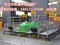 猪床猪用产仔栏铸铁猪栏专业生产厂家河北母猪产床报价图片