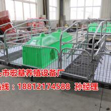 福州养猪设备厂家供应养猪设备有哪些母猪产床多少钱一套图片