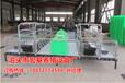 供应广元母猪产床厂家生产销售猪舍常用母猪产仔栏尺寸齐全宏基