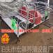 专业供应湖南养猪设备猪舍常用的猪用产仔栏尺寸齐全母猪产床报价