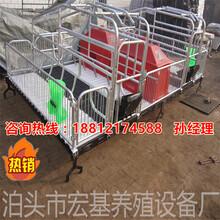 供应平果县养猪设备专业生产厂家猪用分娩床尺寸母猪产床出售图片