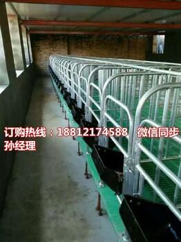 猪用限位栏带漏粪地板定位栏生产厂家优质养猪设备规格齐全
