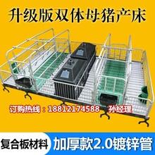 陕西养猪设备厂家报价母猪产床销售猪产床多少钱一套宏基图片