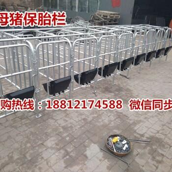 湖南养猪设备批发猪用定位栏的价格是多少钱限位栏生产销售