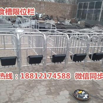 甘肃猪用限位栏价格合理母猪限位栏尺寸齐全养猪设备