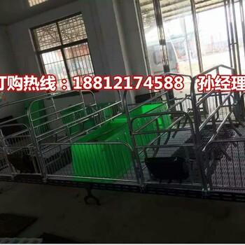 湘西养猪设备厂家批发母猪产仔栏尺寸猪产床型号齐全