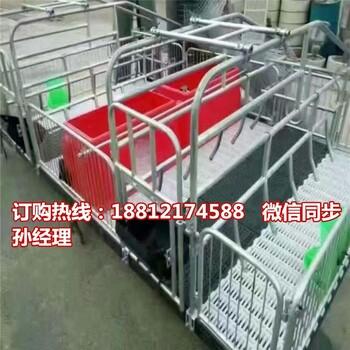 广西猪产床型号母猪分娩栏厂家直销养猪设备专业生销售
