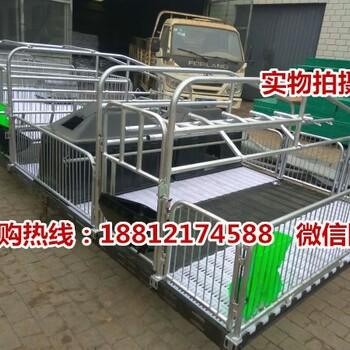 六盘水母猪分娩栏批发镀锌管焊接的双体猪产床价格养猪设备出售