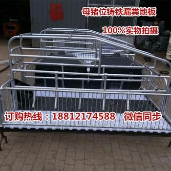 陕西养猪设备专业生产批发猪用产仔栏规格母猪产床出售