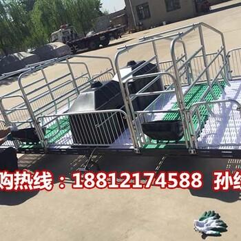 广西猪产床型号齐全母猪分娩栏价格宏基猪产床厂家定制