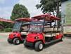 成都绿通达科技有限公司出售各种电动巡逻车,观光车