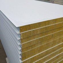 洁净板-岩棉净化板-玻镁彩钢板-净化车间-净化板厂家图片