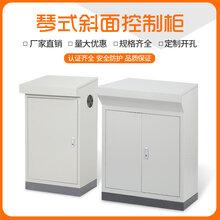 TP斜面配电柜立式斜面控制台琴式斜面控制柜斜面电气柜配电箱图片