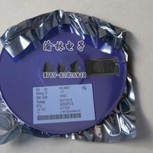 闪灯IC单片机方案开发,定时IC,语音掩膜图片