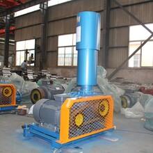 现货供应RTS300电厂氧化风机电厂高压助燃风机