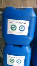 泉州哪里有卖蓝旗阻垢剂蓝旗阻垢剂厂家在哪