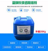丽江厂家供应反渗透膜阻垢剂RO反渗透阻垢剂美国进口蓝旗阻垢剂